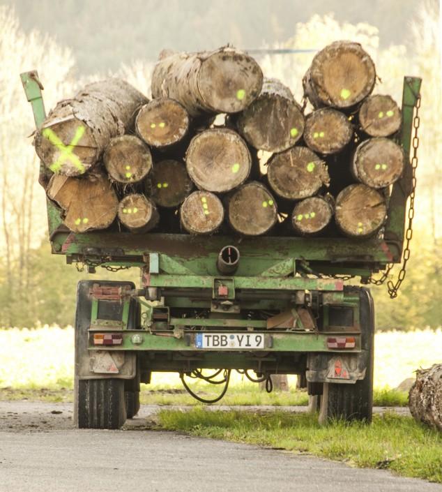 Transport von Holzstämmen